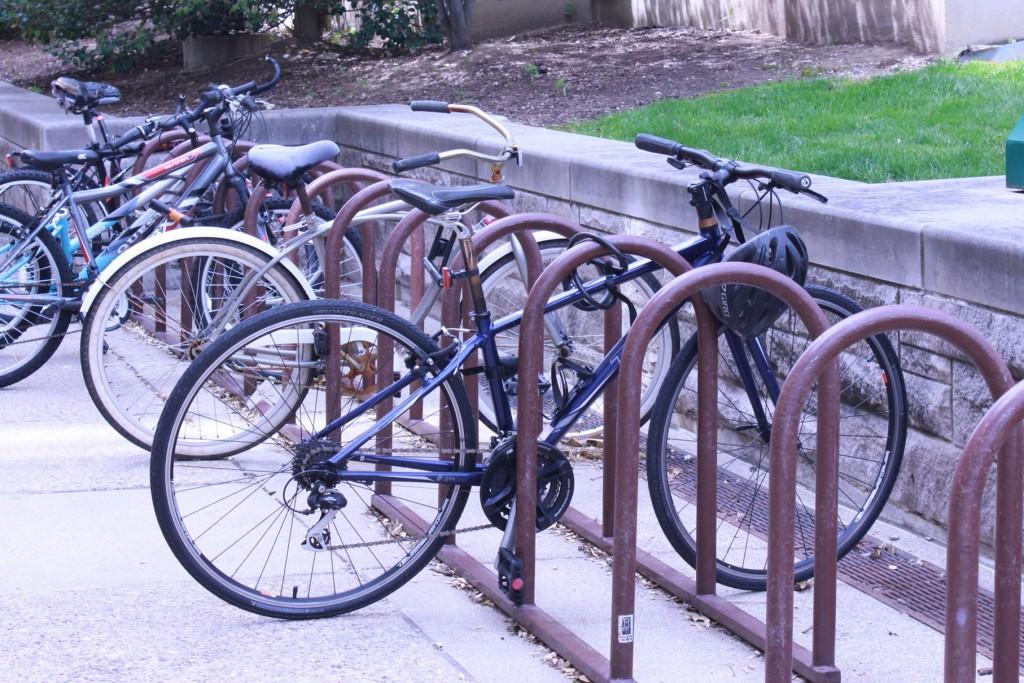 Fernandez-bike-1