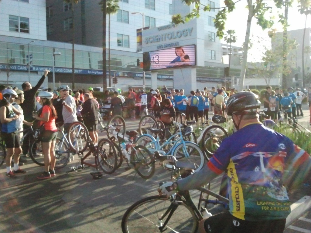 Hundreds of people turned out to join the fight against hit-and-run.