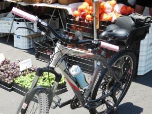 Kanagi-bike