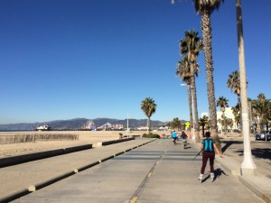 Company on the bike path, and Santa Monica Pier in the distance